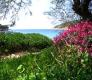 Otok Biševo