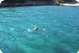 Swimming in Krušćica Bay on Cres: photo by Zoran Pelikan