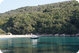 Morning in Krušćica Bay on Cres: photo by Zoran Pelikan