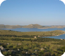 Pinizel/island of Žut
