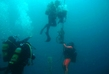 Očišćeno podmorje kod Marine Poreč